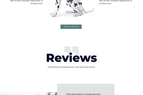 pet-care-04-home-scaled