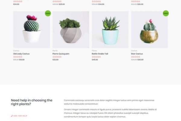 plant-store-02-home-scaled